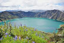 GreenGo Travel, Quito, Ecuador