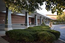 Vernon Area Public Library, Lincolnshire, United States