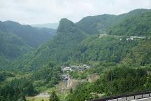 Usa no Machu Picchu, Usa, Japan