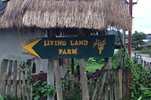 The Living Land Farm, Luang Prabang, Laos