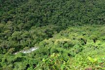 Manu National Park, Manu National Park, Peru