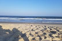 Assateague Beach, Assateague Island, United States