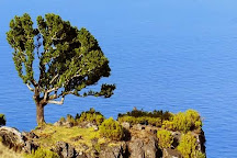 Madeira Seekers - Day Tours, Funchal, Portugal