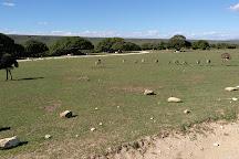 De Hoop Nature Reserve Whale Trail, De Hoop Nature Reserve, South Africa
