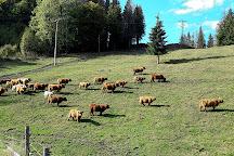 Slovak Paradise, Spisska Nova Ves, Slovakia