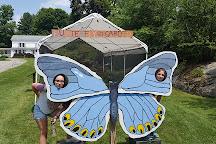 Up Yonda Farm Environmental Education Center, Bolton Landing, United States