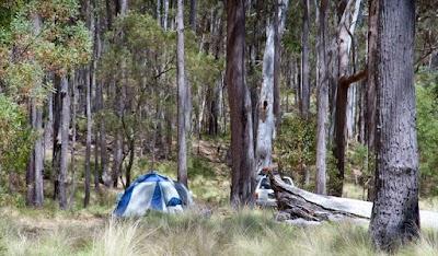 Coxs Creek campground