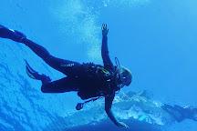 Kona Diving Company, Kailua-Kona, United States