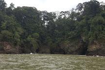 Dolphin Tours, Uvita, Costa Rica