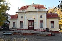 Ady Endre Memorial Museum, Oradea, Romania