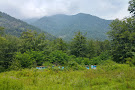 Zagatala State Reserve
