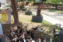 Parque Municipal Erivaldo Cerqueira, Feira de Santana, Brazil