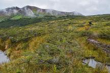 Mount Tarn, Punta Arenas, Chile