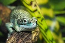 Oslo Reptile Park, Oslo, Norway