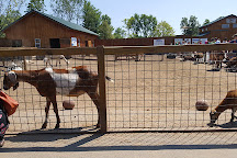 The Wild Animal Park, Chittenango, United States