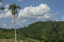 Finca Tungasuk, Caimito, Cuba