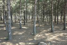 Ahlatlibel Tesisleri Parki, Ankara, Turkey