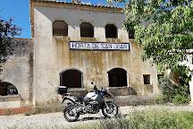 Identitat Extra Virgin Olive Oil, Horta de Sant Joan, Spain