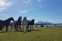 Estancia Bahia Esperanza, Puerto Natales (Torres del Paine), Chile