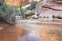 Red Cliffs National Conservation Area, St. George, United States