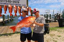 Nicole Fishing Charters, Gulf Shores, United States