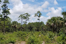 Frenchman's Forest Natural Area, Palm Beach Gardens, United States