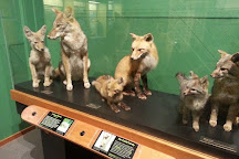 Douglas County Museum of Natural & Cultural History, Roseburg, United States
