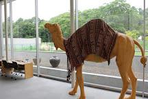 Hirayama Ikuo Silk Road Museum, Hokuto, Japan