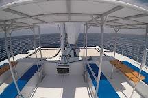 Paradise Sailing Hawaii, Kailua-Kona, United States