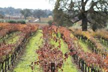 Bray Vineyards, Plymouth, United States