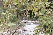Gallatin River, Bozeman, United States