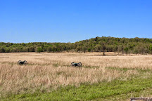 Pea Ridge National Military Park, Garfield, United States