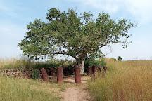 Stone Circles of Senegambia, Serekunda, Gambia