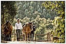 Sundance Ranch, Odemira, Portugal