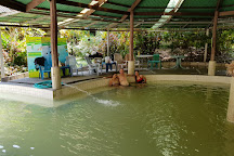 Bo Khlueng Hot Spring, Suan Phueng, Thailand