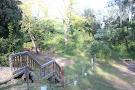 Trees Adventure Grose River Park