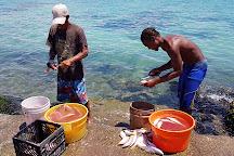 Hellshire Beach, Portmore, Jamaica