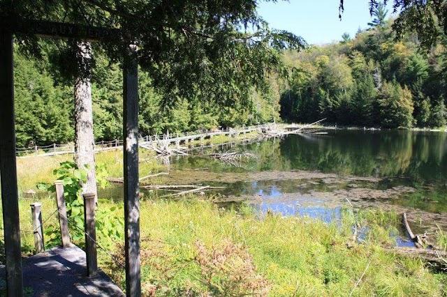 La Forêt La Blanche Ecological Reserve