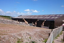 South Lakes Safari Zoo, Lindal-in-Furness, United Kingdom