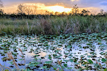Arthur R. Marshall Loxahatchee National Wildlife Refuge, Boynton Beach, United States