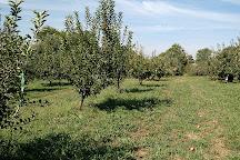 Braeutigam Orchards, Belleville, United States