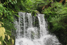Rainbow Springs Nature Park, Rotorua, New Zealand