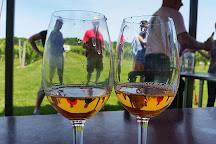 Channing Daughters Winery, Bridgehampton, United States
