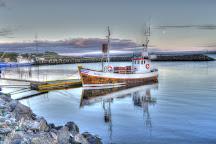 Icelandic Seal Center, Hvammstangi, Iceland