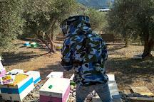 MoKa Honey, Itea, Greece