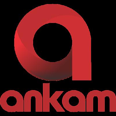 Ankam Play Systems Pvt.Ltd