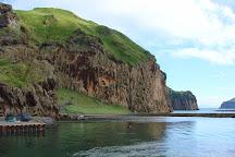 Ribsafari, Vestmannaeyjar, Iceland