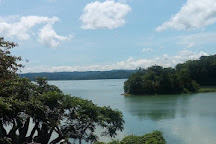 Barro Colorado Island, Panama