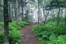 Irving Nature Park, Saint John, Canada