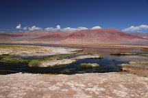 Carachi Pampa, Antofagasta de la Sierra, Argentina